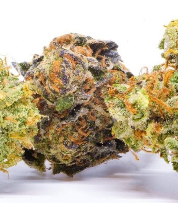 Is High Potency Cannabis a Problem For Genetic Diversity?