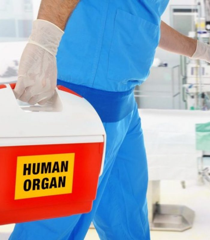 Phase II Clinical Trial Says CBD May Help Organ Transplant Outcomes