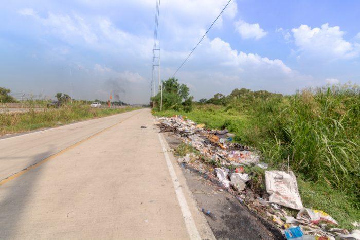 biodegradable coffee cups in roadside trash pile