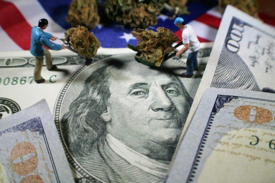 cannabis industry, jobs, cannabis, medical cannabis, growers, cultivators, budtenders, strains terpenes