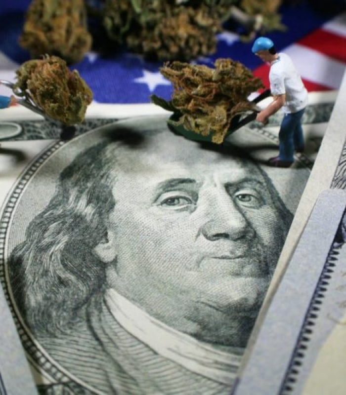 Cannabis Industry Jobs Are Coming By The Thousands!