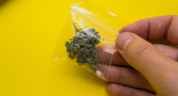 how to store cannabis, cannabis storage, CBD, THC, THCV, CBN, freshness, cannabis, medical cannabis, recreational cannabis