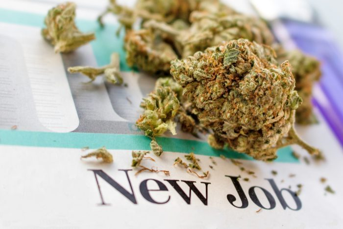 cannabis jobs, against cannabis, anti-cannabis lobbying, medical cannabis, recreational cannabis, legalization, Big Pharma, Tobacco, USA, prohibition