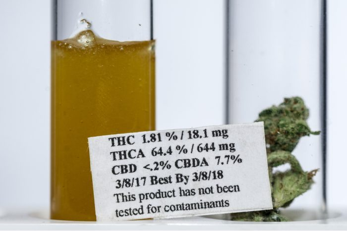 terp sauce, cannabis, medical cannabis, recreational cannabis, medicinal benefits, terpenes, cannabinoids, entourage effect, extracts, BHO extraction