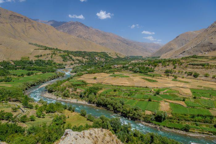strains, Afghanistan, best strains in the world, cannabis strains, medical cannabis recreational cannabis, cannabinoids, chemivars