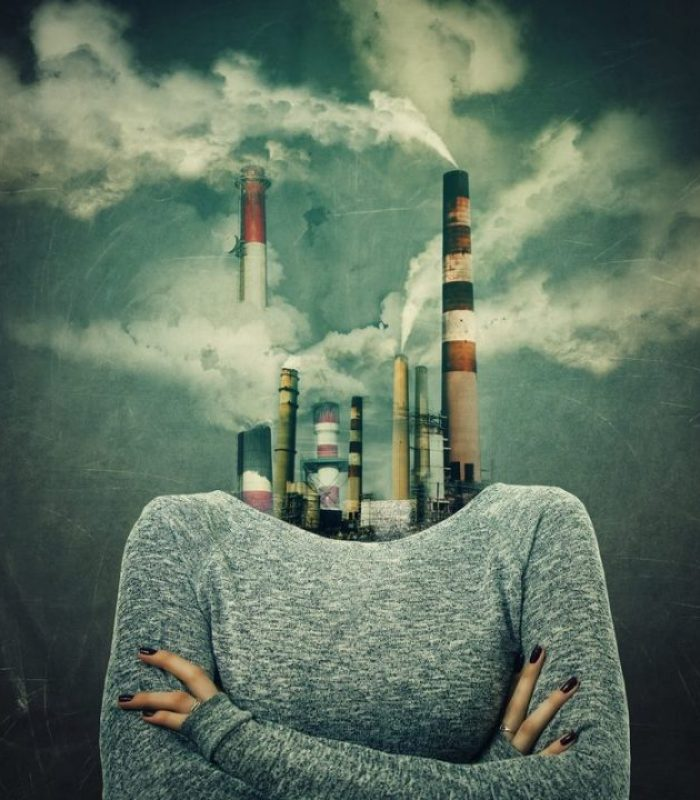 Air Pollution Harming Every Organ In Your Body
