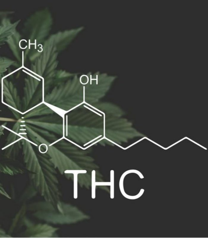 Where Is THC Legal? Legal Loophole Says All Through U.S.