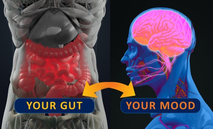 gut health, leaky gut, IBD, Crohn's disease, cannabinoids, endocannabinoid system, CB receptors, CB1, CB2