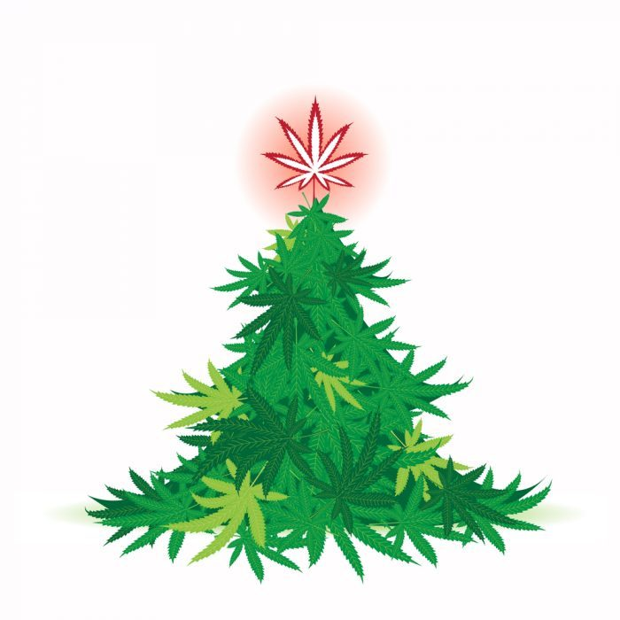Christmas tree made of cannabis leaves