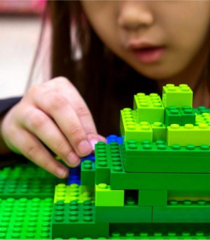 Hemp LEGO Bricks Part Of Hemp Plastic Revolution
