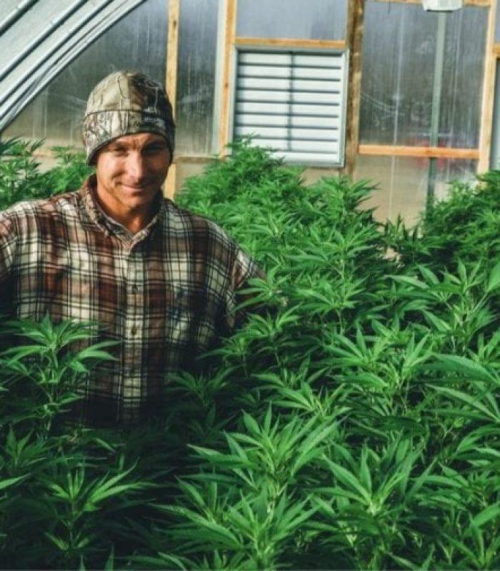 Top Hemp Alternatives For Single-Use Plastic In Cannabis