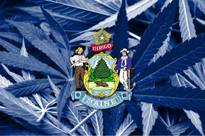 cannabis in maine