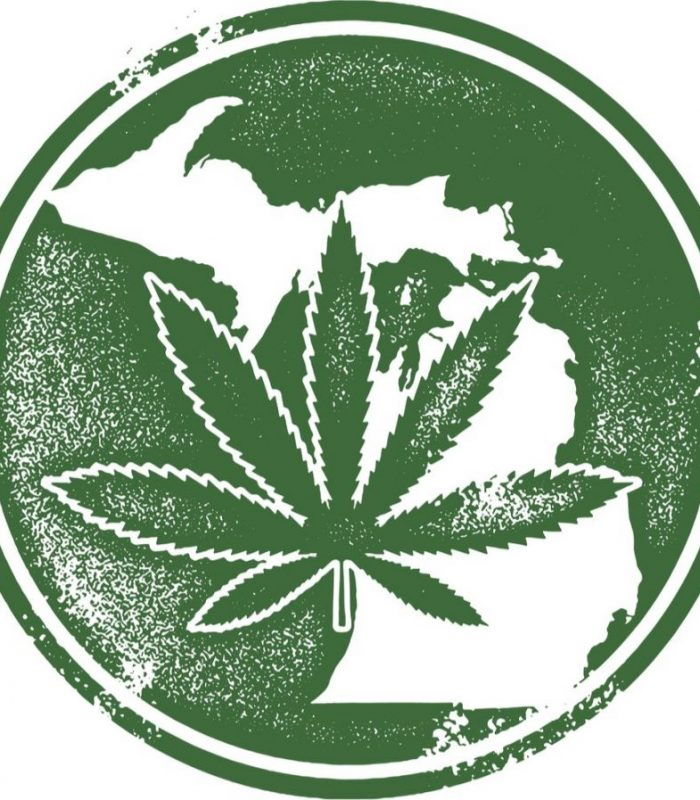 Michigan Cannabis Law: What You Need To Know