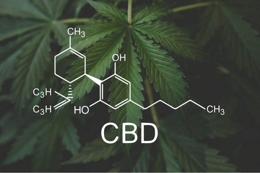 CBD, CBD rich strain, cannabinoids, THC, medical cannabis, legalization, recreational cannabis, vaporizers, smoking, edibles