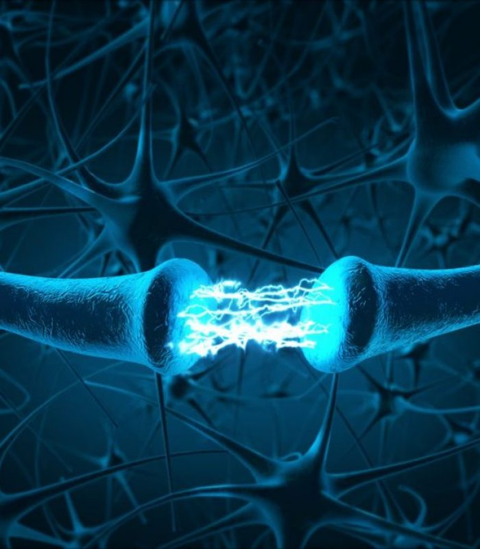 CB1 Receptor Misplacement May Lead to Neurodegeneration
