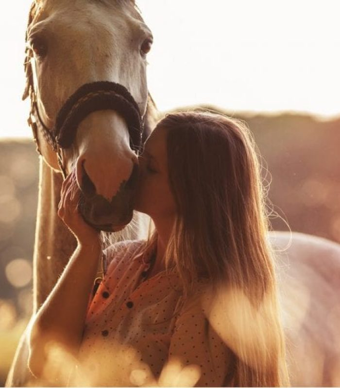 Trending in Equine Circles: CBD for Horses