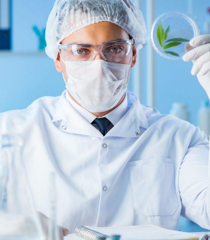 NIDA Announces It Will Fund Cannabis Studies: Good Or Bad?