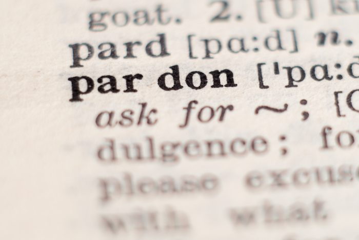pardon entry in the dictionary