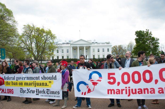 cannabis protest