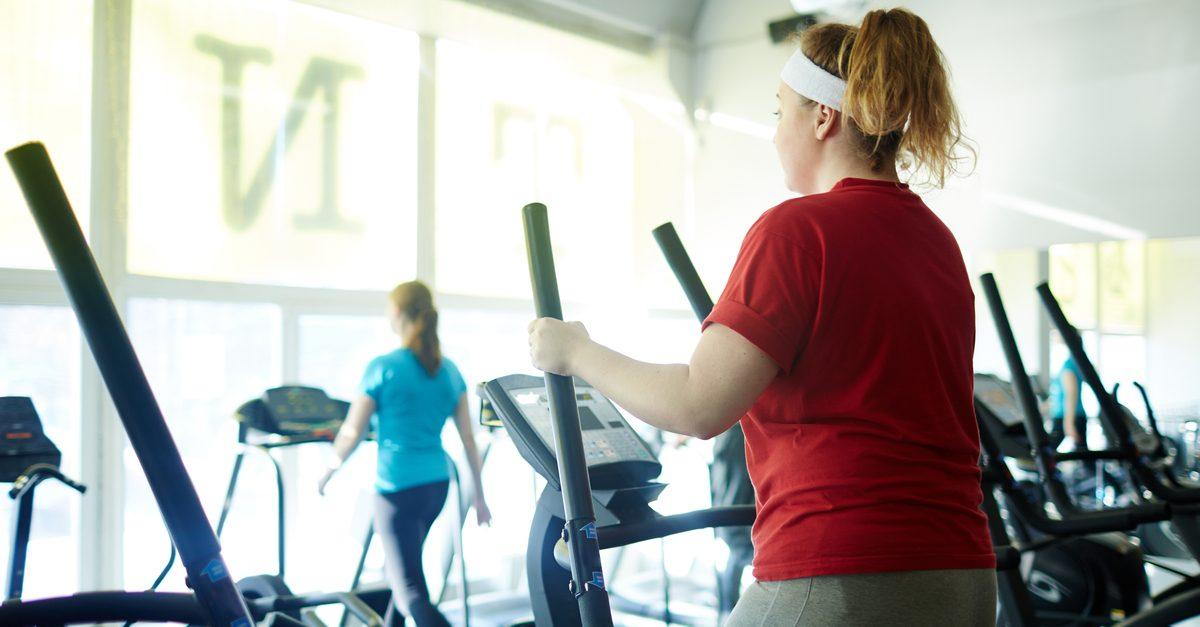 body fat, adipose tissue, fat cells, ECD, endocannabinoids