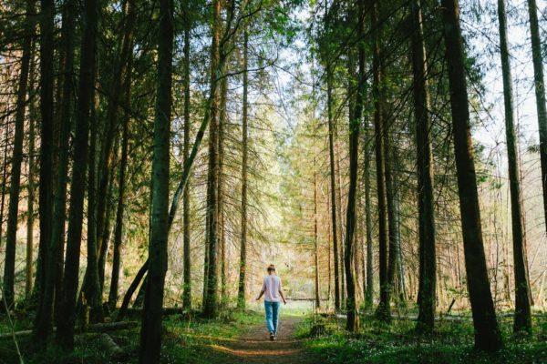 person walking in woods smelling alpha pinene