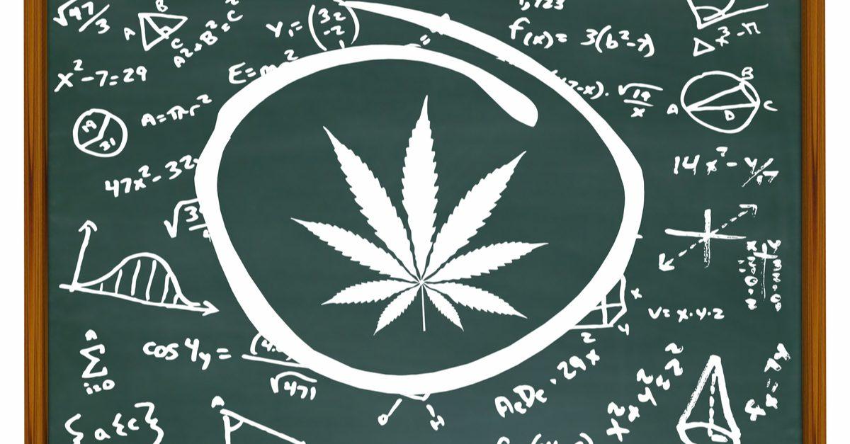 cannabis education chalkboard