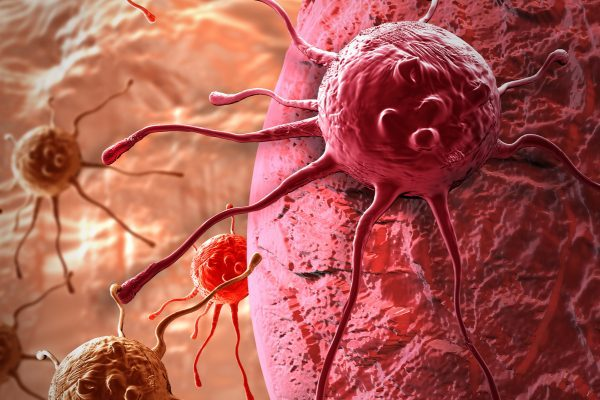 cancer cell 3D animation