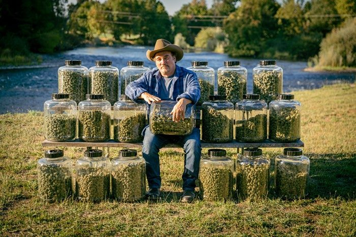 Jim Belushi and his cannabis