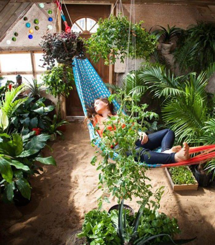 DIY Greenhouse Grows Autoflower In The Dead Of Winter