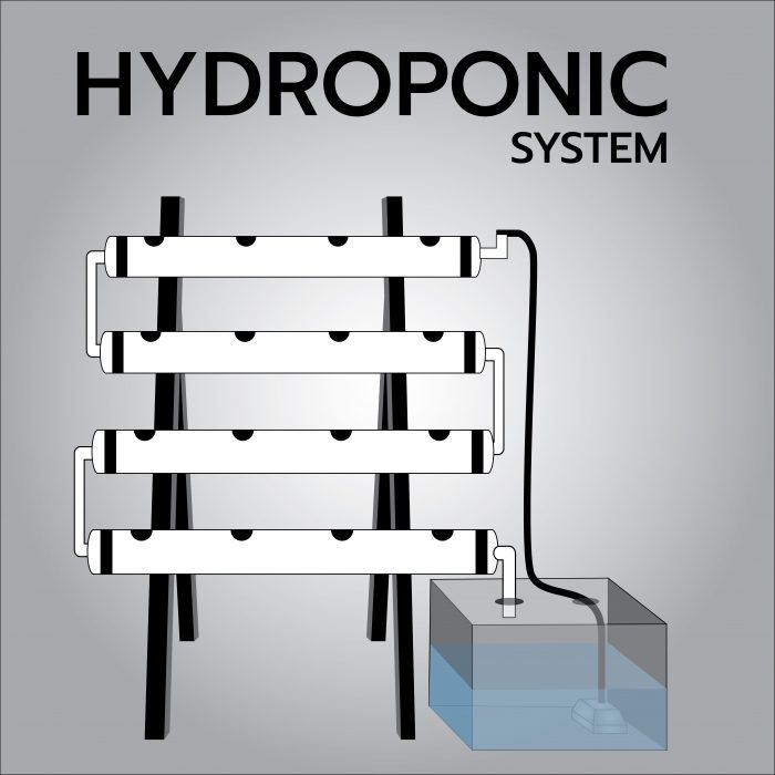 hydroponic systems graphic