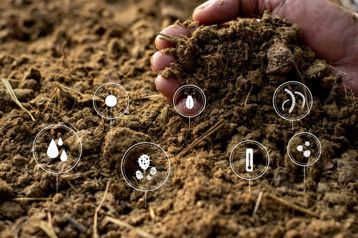 living soil represented by icons of nitrogen, water, etc.