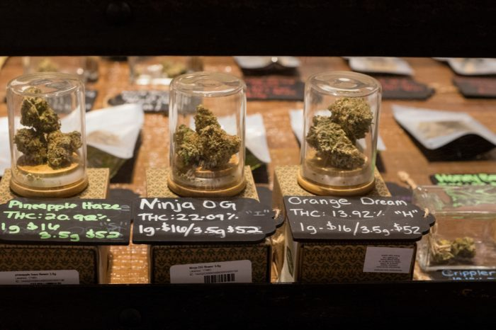 dispensary with multiple chemovars of cannabis