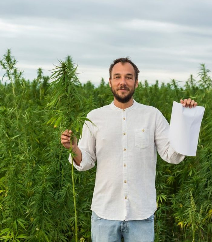 Hemp Paper May Cost More But the Benefits are Worth it
