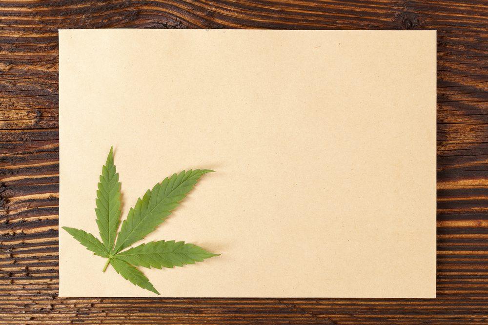 Hemp Paper with hemp leaf