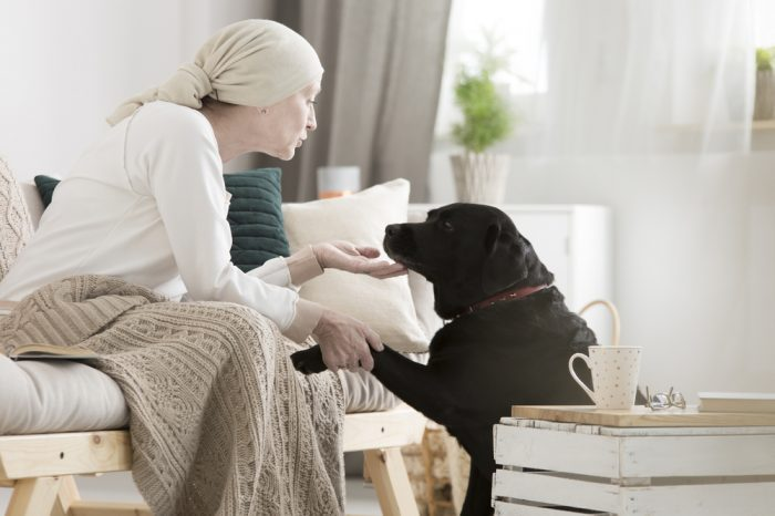 gods with cancer might be helped by cannabis, like this dog near a woman with cancer