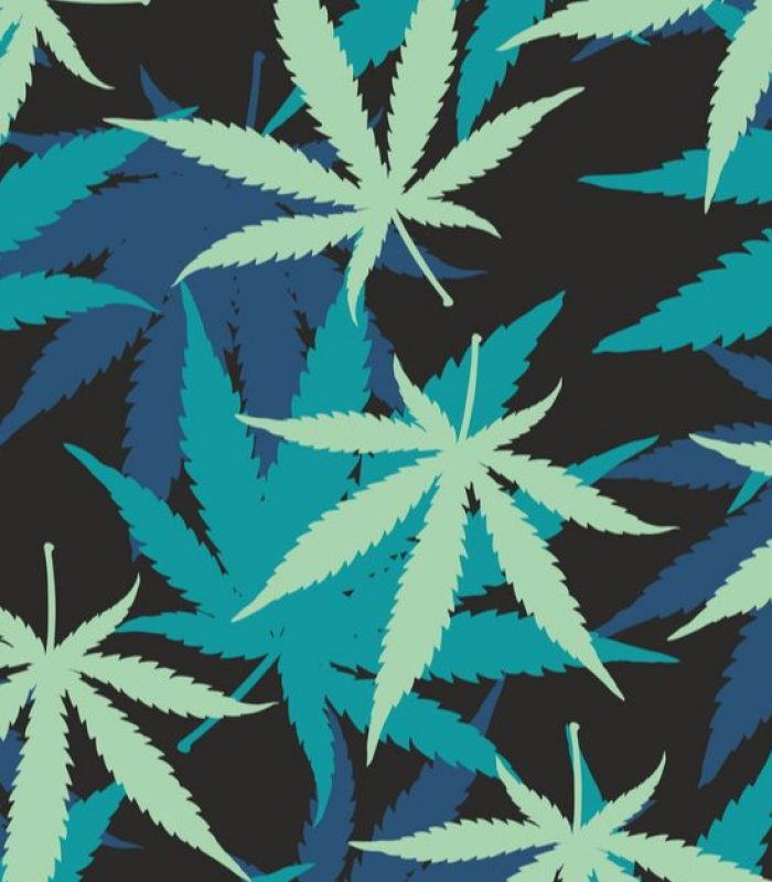 How To Get FDA Approval For Cannabis?