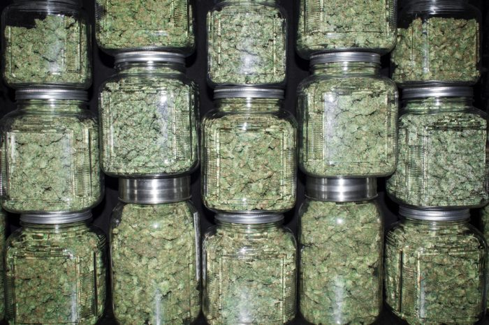 less chemo better result represented by jars of cannabis
