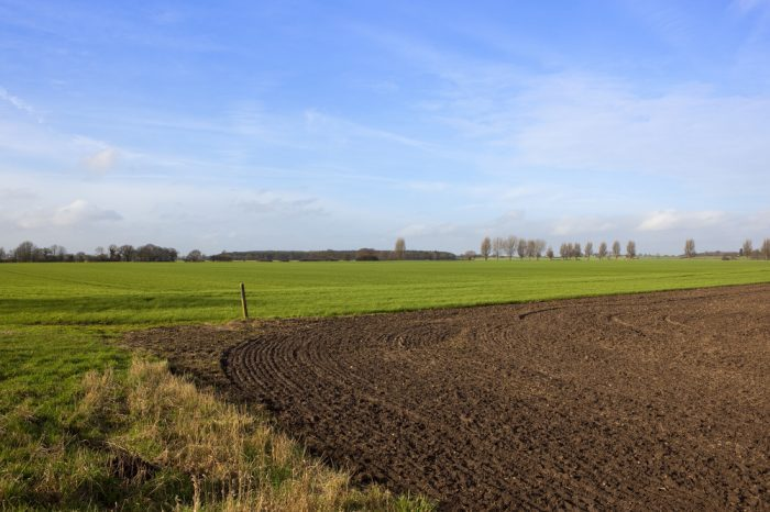 dry farming underway shown by new soil tilling
