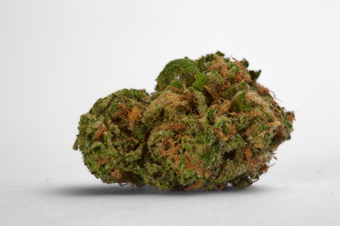 best strains for ptsd represented by ble dream nug