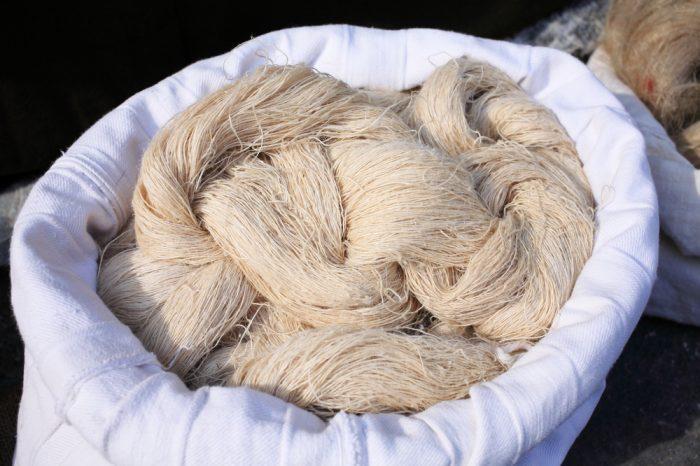 hemp versus cotton depicted as hemp fibre sits in a sack