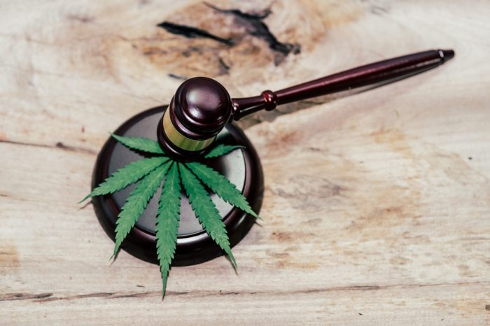 is cbd legal in my state represented by cannabis leaf and gavel