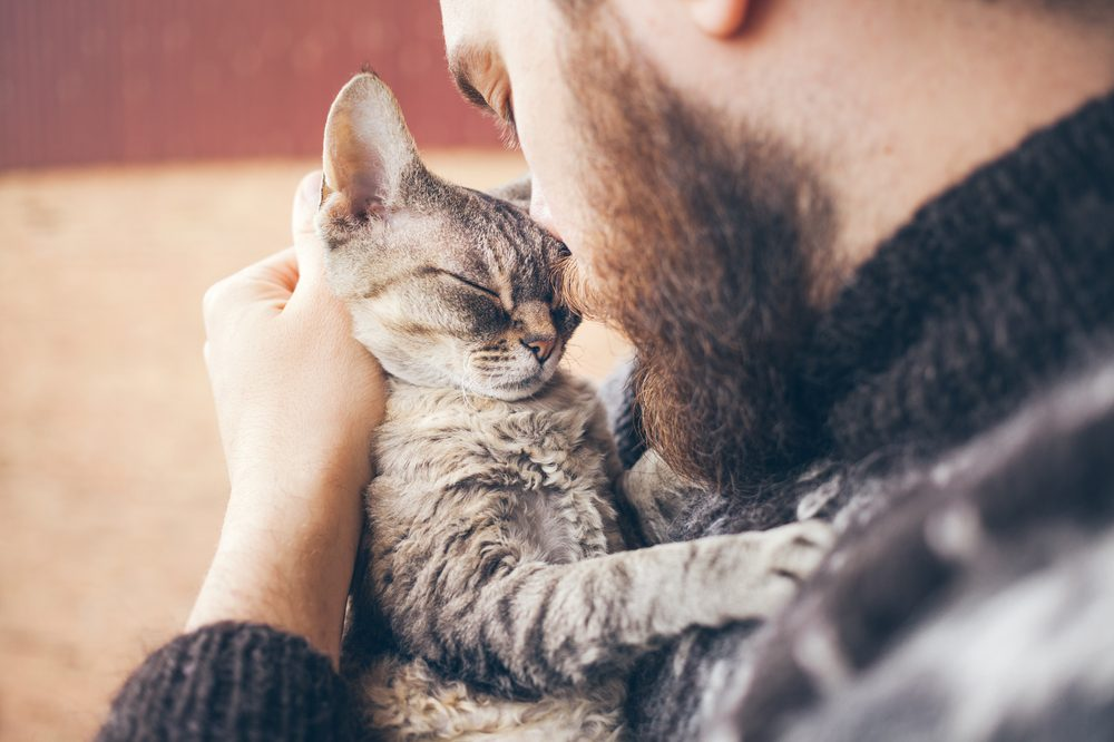 false hemp cbd for pets advertising could hurt this cat in a bearded man's arms