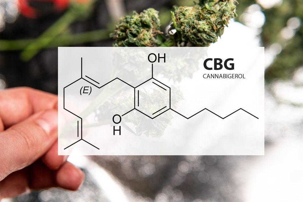 CBG could help with treating colon cancer with cannabis