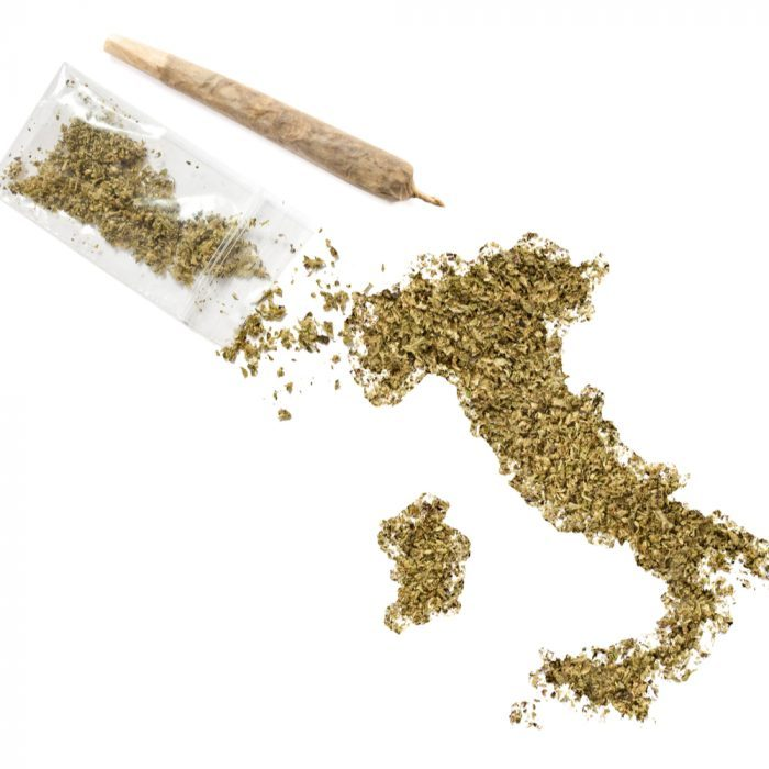 rights for cannabis patients worldwide represented by ground cannabis in shape of italy