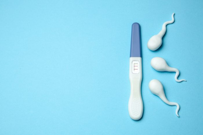 sperm development represented by three rubber sperm and a pregnancy test