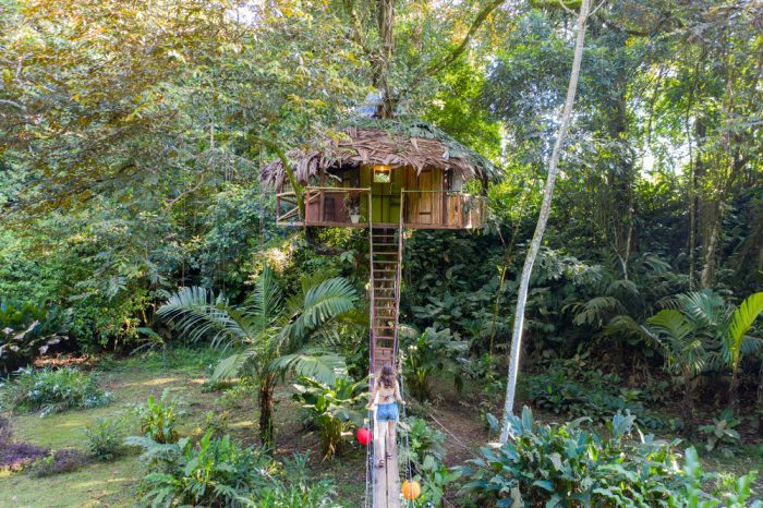 Cannabis Friendly Treehouse Vacation Spots in America
