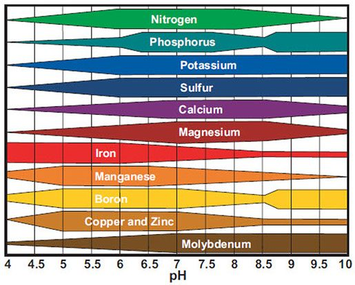 ph levels represented on chart