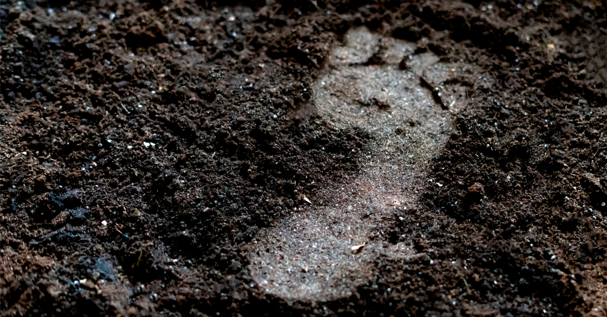 footprint in soil suggesting that dirt is good for you