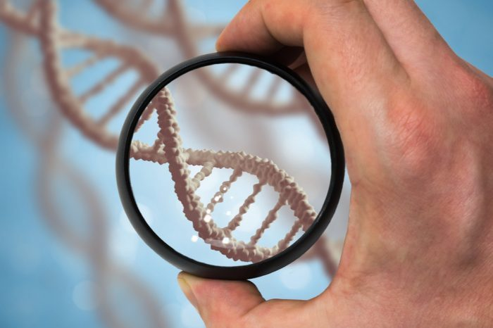 preserving cannabis genetics represented by magnifyier over gene double helix