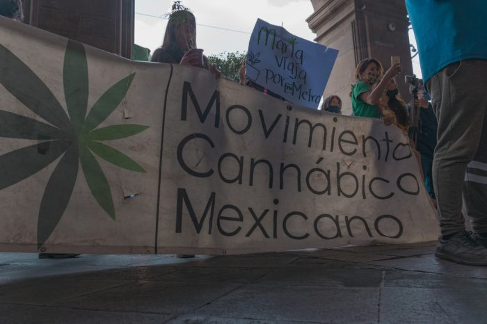 blood free cannabis represented by mexican youth carrying flag